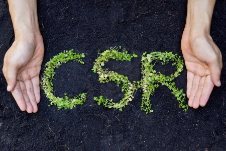 csr: small green plants arranged in csr shape with supporting hands on soil background - corporate social responsibility