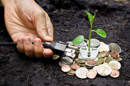 corporate waste: a tree growing on a socket with money and a plug Stock Photo