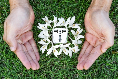 corporate waste: hands holding a socket with white flowers
