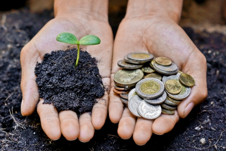 fertilizing: hands holding a tree and coins