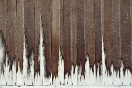 wood plank wall texture with white edge photo