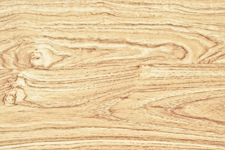 wooden texture with natural wood pattern photo