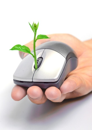 green computing: hand holding a tree growing on a mouse   green it Stock Photo
