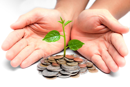 preservation: tree growing on coins   csr   sustainable development Stock Photo