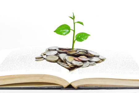 tree growing from books with coins and eye glasses   A big open book with coins and tree   Reading makes you richer  concept  photo