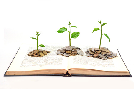 tree growing from books with coins   A big open book with coins and tree   Reading makes you richer  concept  photo