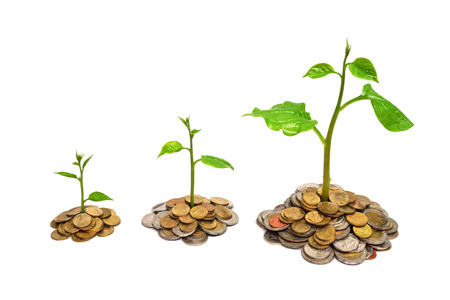 corporate responsibility: trees growing on coins   csr   sustainable development