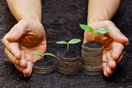 handen die bomen groeien op munten mvo duurzame ontwikkeling economische groei Stockfoto