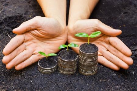 csr: manos sosteniendo �rboles que crecen en las monedas de desarrollo el crecimiento econ�mico sostenible csr