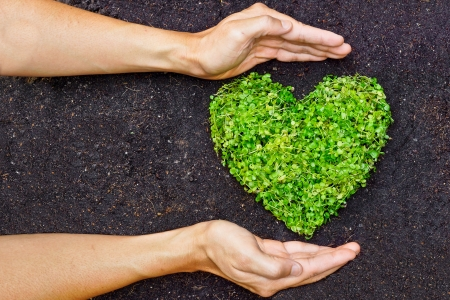 responsibilities: hands holding green heart shaped tree   tree arranged in a heart shape   love nature   save the world   heal the world   environmental preservation