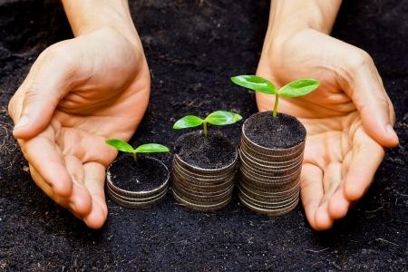 governance: handen die bomen groeien op munten mvo duurzame ontwikkeling economische groei Stockfoto