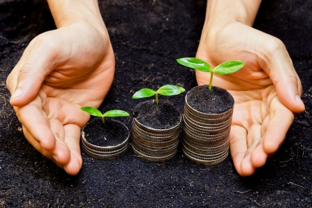 corporate social: hands holding tress growing on coins   csr   sustainable development   economic growth