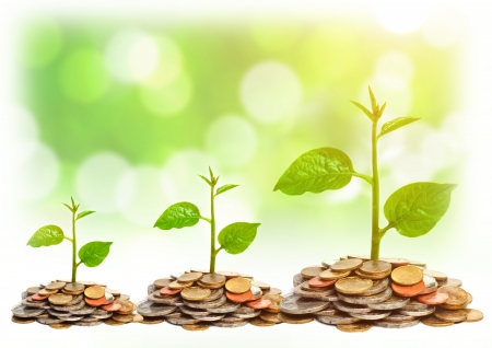 trees growing on coins   csr   sustainable development   trees growing on stack of coins photo
