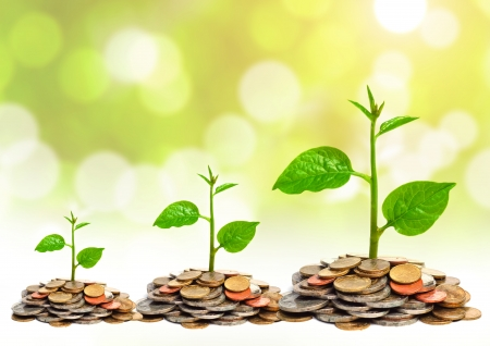 grow: trees growing on coins   csr   sustainable development   trees growing on stack of coins Stock Photo
