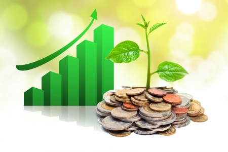 trees growing on coins with green graph   csr   sustainable development   trees growing on stack of coins Stock Photo