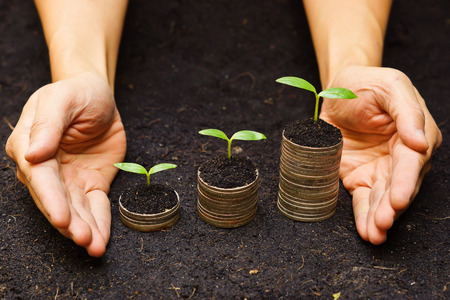 preservation: hands holding tress growing on coins   csr   sustainable development   economic growth   trees growing on stack of coins