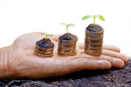 gobierno corporativo: manos sosteniendo árboles que crecen en las monedas