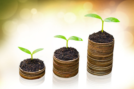 tress: tress growing on coins