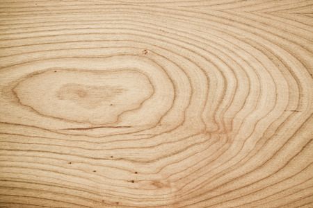 wood rings texture Imagens
