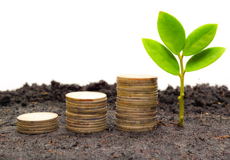 etica: montones de árboles de monedas con árboles pequeños de ética empresarial csr buen negocio verde gobernabilidad Foto de archivo