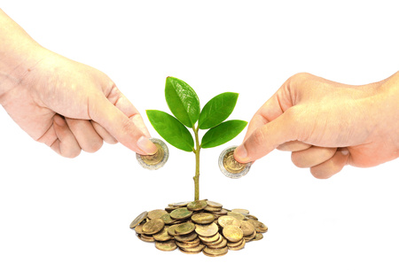 hand giving a golden coin to a tree growing from pile of coins   csr   green business   business ethics   good governance photo