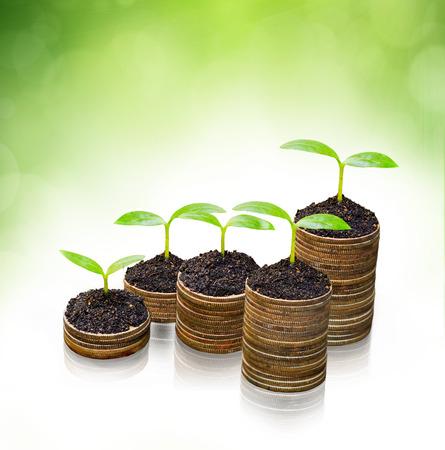 csr: �rboles que crecen en las monedas de los �rboles csr desarrollo sostenible de crecimiento econ�mico en crecimiento en la pila de monedas