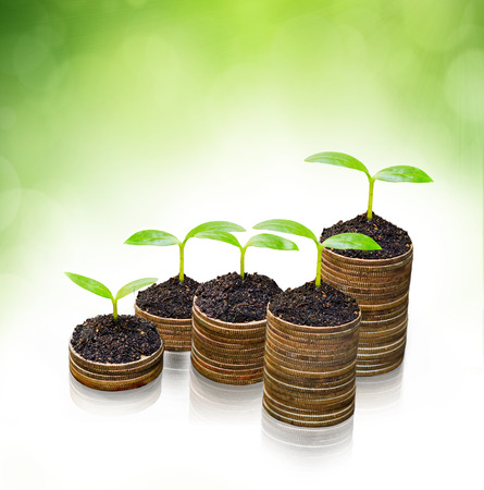 csr: tress growing on coins   csr   sustainable development   economic growth   trees growing on stack of coins Stock Photo