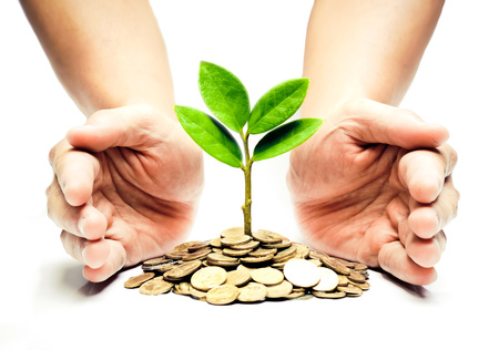 money pound: Palms with a tree growing from pile of coins   hands holding a tree growing on coins   csr green business   business ethics   good governance