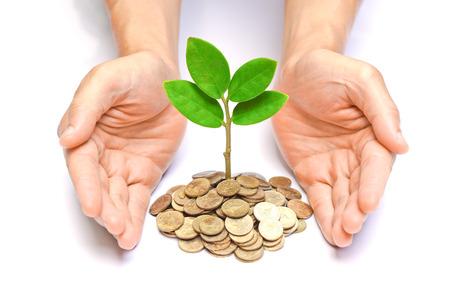 hands holding tress growing on coins / csr / sustainable development / economic growth / trees growing on stack of coins