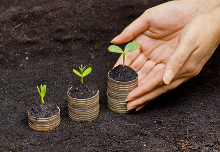 stock predictions: hands holding trees growing on coins   csr   sustainable development   economic growth   trees growing on stack of coins   green development
