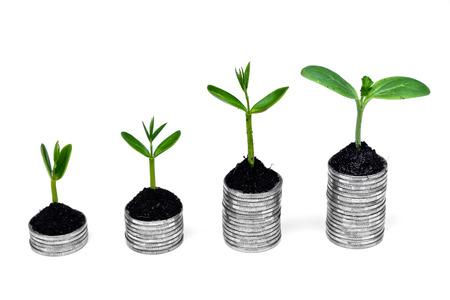 gobierno corporativo: árboles que crecen en las monedas de los árboles csr desarrollo sostenible de crecimiento económico en crecimiento en la pila de monedas