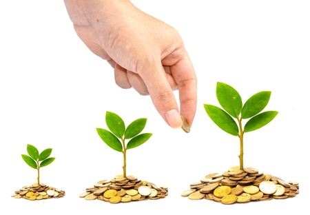 golden coins: hand giving a golden coin to trees growing on piles of coins   csr   sustainable development   trees growing on stack of coins Stock Photo