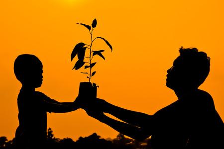 sembrando un arbol: padre e hijo que sostienen un árbol juntos sembrar un árbol