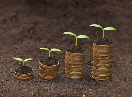 sustentabilidad: �rboles que crecen en las monedas de los �rboles csr desarrollo sostenible de crecimiento econ�mico en crecimiento en la pila de monedas