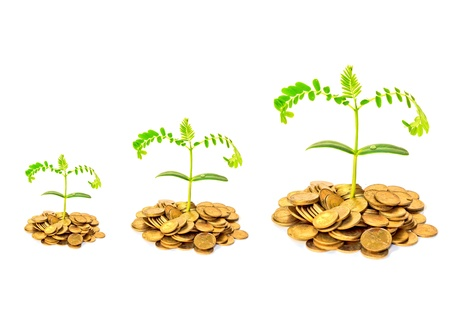 money pounds: trees growing on coins Stock Photo