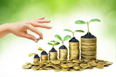 money pounds: hand giving a golden coin to a tree growing on piles of golden coins - saving money Stock Photo