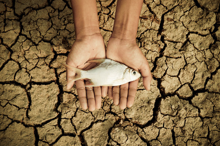 scarcity: hand holding a dead fish over cracked earth