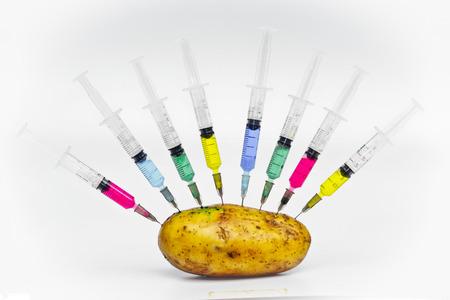 injecting chemical into gmo potato - gmo food Stock Photo