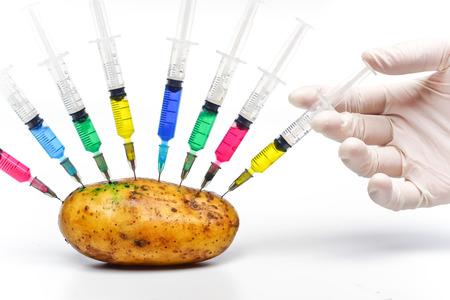 hand injecting chemical into gmo potato - gmo food