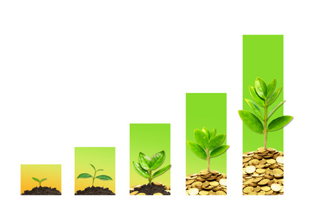 responsibilities: tress growing on coins in germination sequence with green graph  csr  sustainable development  business growth