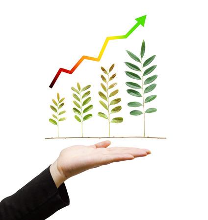 Main tenant arbre disposés sous forme de graphique vert sur fond isolé / rse / développement durable / responsabilité sociale des entreprises Banque d'images - 32073479