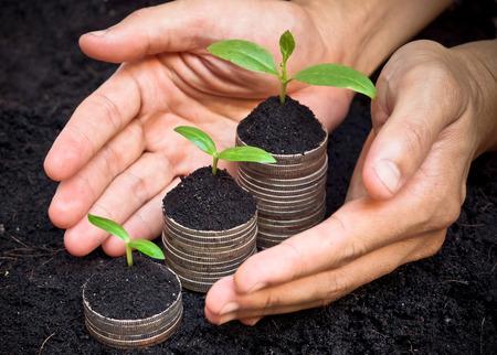 desarrollo econ�mico: �rboles que crecen en las monedas  rsc  desarrollo  crecimiento econ�mico sostenible  �rboles que crecen en la pila de monedas Foto de archivo