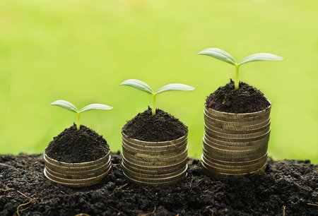 stock predictions: trees growing on stack of coins