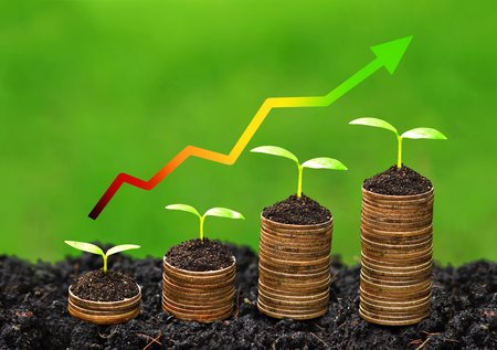 future growth: trees growing on coins with green graph  business with csr