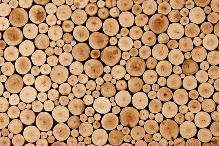 round teak wood stump texture