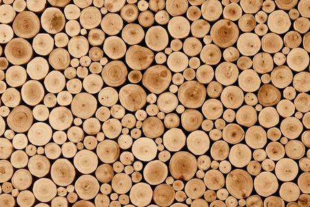 oak: round teak wood stump texture