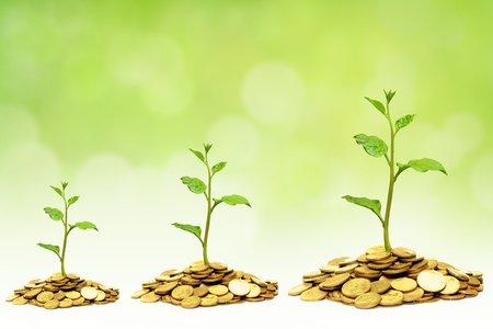 bomen groeien op gouden munten  zakelijke groei met mvo Stockfoto