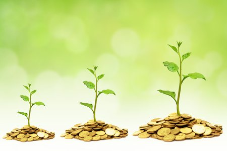 growth and business: trees growing on golden coins  business growth with csr