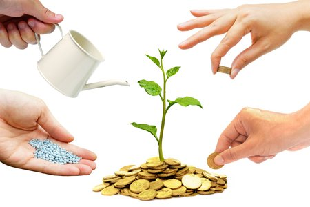 watering plant: Hands helping planting trees growing on coins together - Building business with csr and ethics