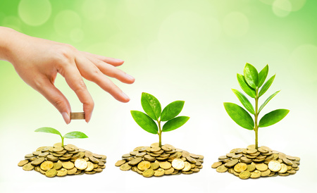 money pounds: hand giving coins to trees growing on piles of golden coins Stock Photo
